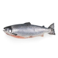 Regal-Fresh G/G King Salmon3-4kg RW(KG) - Click for more info