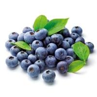 BULK Organic Frozen Blueberries (CTN) - Click for more info